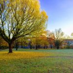 Südstadt (南町)散策①!公園、子ども、そして…!